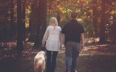 image for October 7-13th is Walk Your Dog Week!